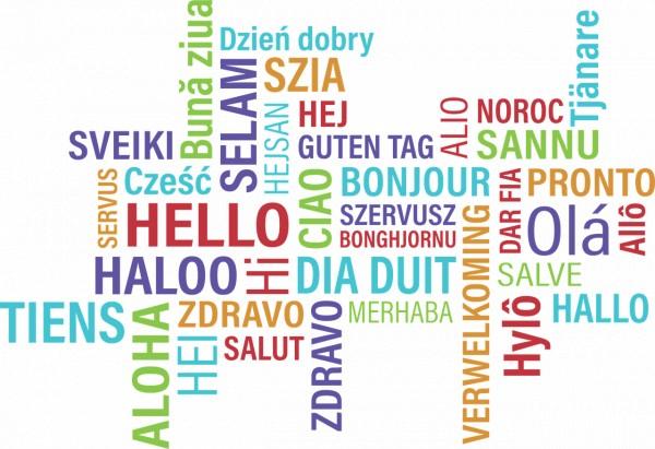 Učíte sa cudzí jazyk?